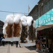 Report: Dog and cat fur in China